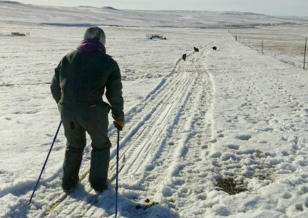 Deron Cross Country Skiing 2017-01-29