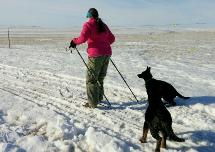 Marna Cross Country Skiing 2017-01-29