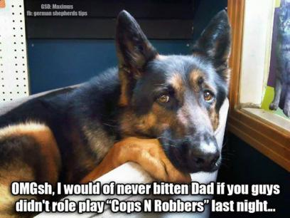 GSD Cops & Robbers